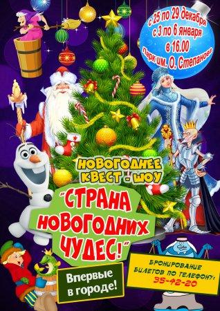 """Интерактивное шоу """"Страна новогодних чудес"""""""