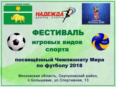 Фестиваль игровых видов спорта